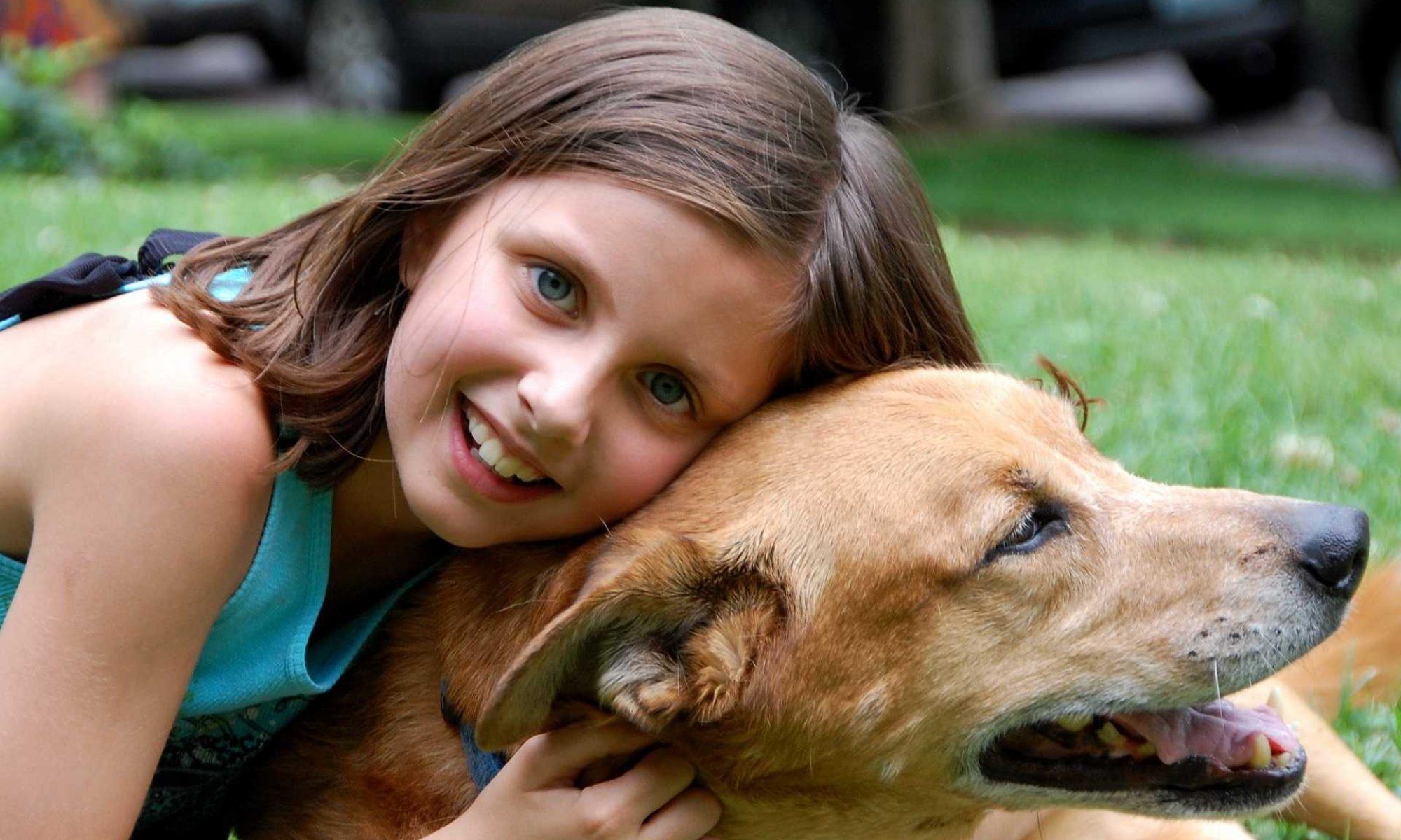 Pensione Cani Lomellina